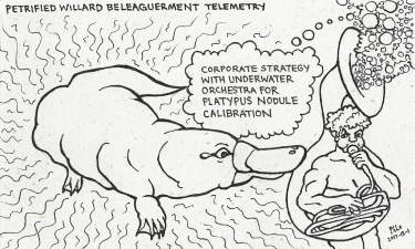 Petrified Willard Beleaguerment Telemetry